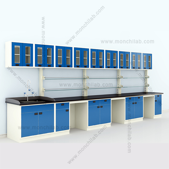 Chemistry Lab Wall Bench with Wall Cupboard